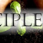 Who is Your Disciple